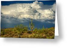 Stormy Desert Skies  Greeting Card