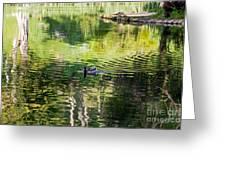 Stow Lake Idyll Greeting Card