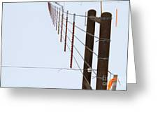 Straight Line Fence Greeting Card
