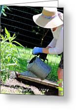 Straw Hat Gardener Greeting Card