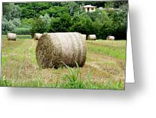 Straw To Collect Greeting Card