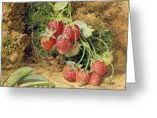 Strawberries And Peas Greeting Card by John Sherrin