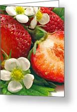 Strawberries And Vanilla Greeting Card