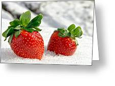 Strawberries On Ice  Greeting Card