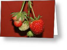 Strawberry Delicious Greeting Card