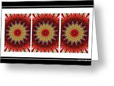 Strawberry Explosion Triptych - Kaleidoscope Greeting Card