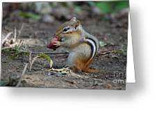 Strawberry Thief Greeting Card