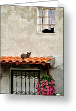 Stray Cats Art Composition Greeting Card