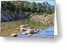 Stream And Rocks At Bavella In Corsica Greeting Card