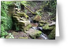 Stream And Wall Greeting Card