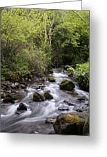 Stream At Glencar Greeting Card
