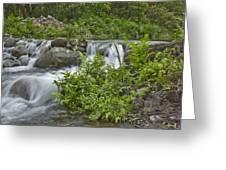 Stream Falls Greeting Card
