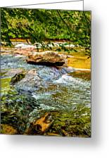 Stream II Greeting Card