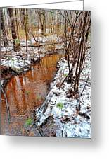 Stream In The Winter Forest Greeting Card