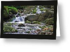 A Stream In Wicklow # 4 Greeting Card