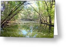Stream Of Water Greeting Card