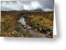 Stream On Rannoch Moor  Greeting Card