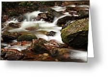 Stream Running Over Rocks Greeting Card