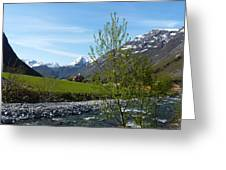 Stream To The Fjord Greeting Card
