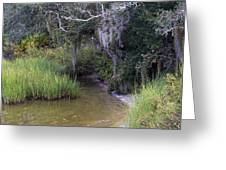 Stream To The Past Greeting Card
