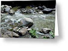 Stream Water Foams And Rushes Past Boulders Greeting Card