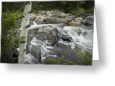 Stream With Waterfall In Vermont Greeting Card