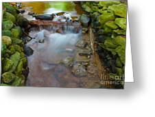 Streaming Green Greeting Card