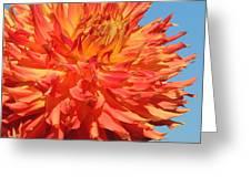 Streaming Petals Greeting Card