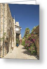 Street In Jaffa Tel Aviv Israel Greeting Card