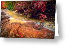 Striated Creek Greeting Card