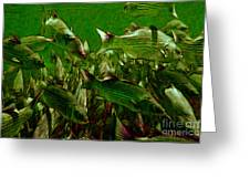 Striped Bass - Painterly V2 Greeting Card