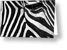 Stripes Greeting Card