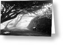 Stroll In The Fog Greeting Card by Valeria Donaldson