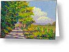 Study For Afternoon Shadows Greeting Card