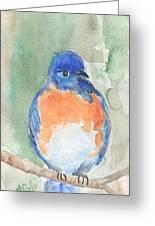 Study Of A Bluebird Greeting Card