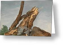 Study Of Rocks And Branches, George Augustus Wallis Greeting Card
