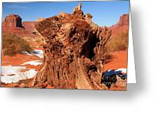 Stumped At Monument Valley Greeting Card