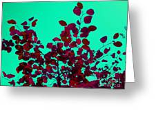 Stunning Red On Blue Sky Greeting Card