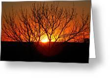 Stunning Stone Park Sunset Greeting Card