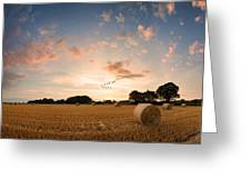 Stunning Summer Landscape Of Hay Bales In Field At Sunset Digital Painting Greeting Card by Matthew Gibson