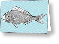 Stylized Fish. Sea Fish. Dorado. Black Greeting Card
