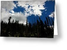 Subalpine Summer Skies Greeting Card