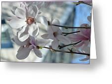 Sublime Magnolia Greeting Card