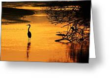 Sublime Silhouette Greeting Card