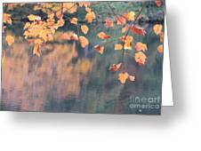 Subtle Autumn Reflections Greeting Card