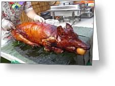 Succulent Pig Greeting Card