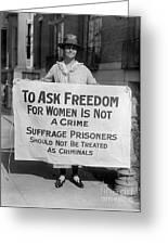 Suffragist 1917 Greeting Card