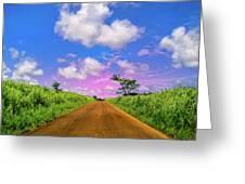 Sugar Cane Sunrise Greeting Card