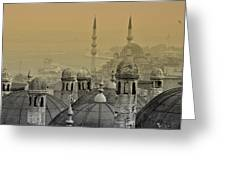 Suleymaniye Mosque And New Mosque In Istanbul Greeting Card by Ayhan Altun