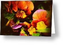 Sultry Nights - Flower Photography Greeting Card